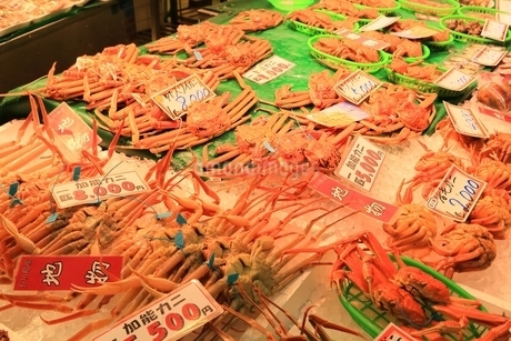 金沢・近江町市場の写真素材 [FYI01818218]