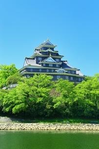 新緑の岡山城と旭川の写真素材 [FYI01818227]