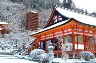 雪の談山神社の写真素材 [FYI01818237]