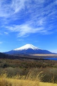 パノラマ台より望む富士山の写真素材 [FYI01818246]