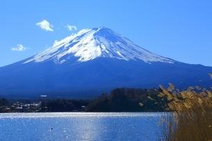 河口湖より望む富士山の写真素材 [FYI01818282]