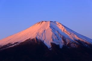 山中湖より望む紅富士の写真素材 [FYI01818319]