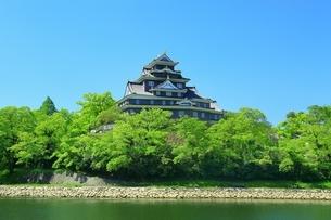 新緑の岡山城と旭川の写真素材 [FYI01818338]