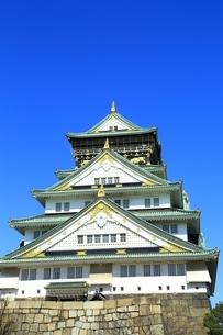 早春の大阪城天守閣の写真素材 [FYI01818394]