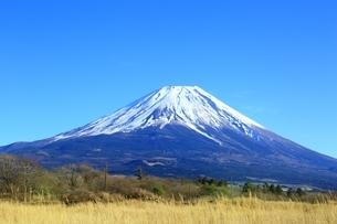 朝霧高原より望む富士山の写真素材 [FYI01818578]