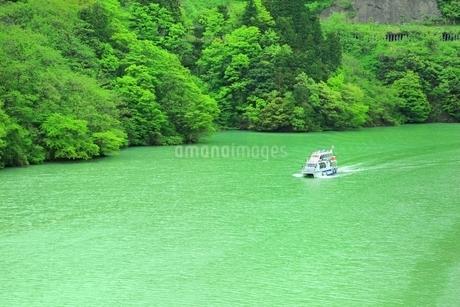 新緑の庄川峡と遊覧船の写真素材 [FYI01818742]