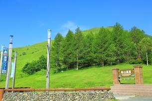 夏の車山高原の写真素材 [FYI01818749]