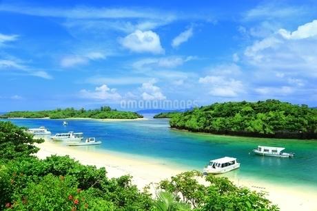 石垣島の川平湾の写真素材 [FYI01818763]