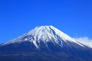朝霧高原より望む富士山の写真素材 [FYI01818845]
