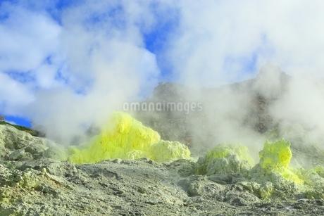 秋の川湯・硫黄山の写真素材 [FYI01819031]