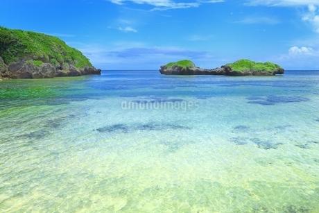 西表島・星砂の浜の写真素材 [FYI01819038]