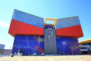 大阪 海遊館の写真素材 [FYI01819156]