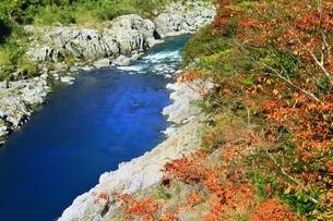 紅葉の小歩危峡の写真素材 [FYI01819188]