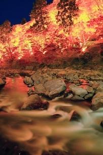 紅葉の香嵐渓ライトアップの写真素材 [FYI01819204]