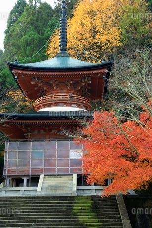 紅葉の嵐山 法輪寺の写真素材 [FYI01819257]