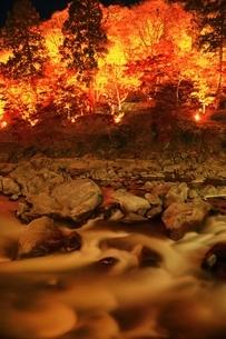 紅葉の香嵐渓ライトアップの写真素材 [FYI01819294]