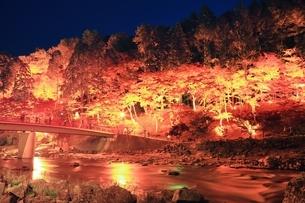 紅葉の香嵐渓ライトアップの写真素材 [FYI01819363]