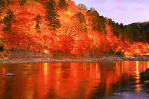 紅葉の香嵐渓ライトアップの写真素材 [FYI01819433]
