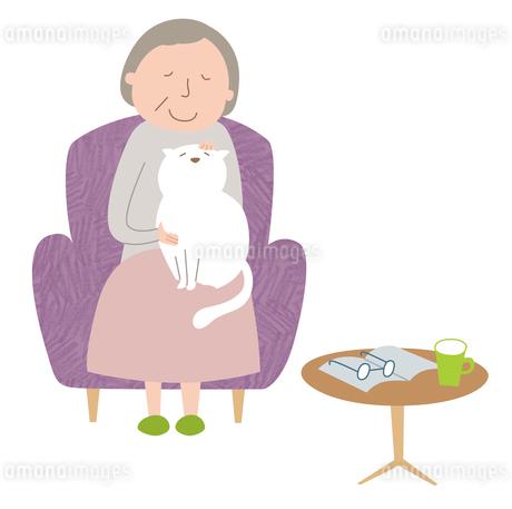 ソファに座り猫に癒されるおばあさんのイラスト素材 [FYI01819530]