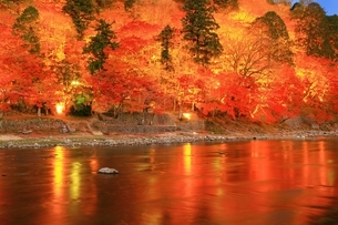 紅葉の香嵐渓ライトアップの写真素材 [FYI01819595]