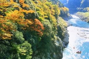 紅葉の小歩危峡とラフティングの写真素材 [FYI01819643]
