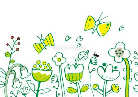 花畑と蝶のイラスト素材 [FYI01819700]