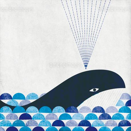 潮を吹くクジラのイラスト素材 [FYI01819735]