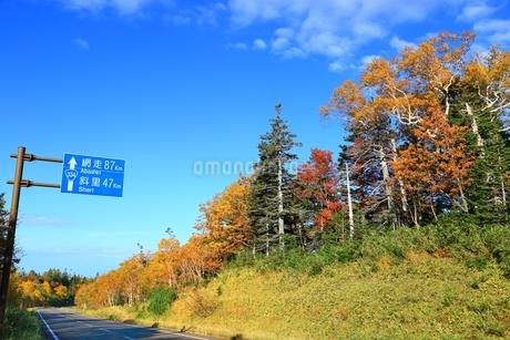知床横断道路の紅葉の写真素材 [FYI01819772]