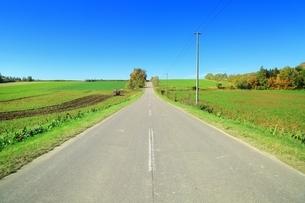 清里町の田園風景の写真素材 [FYI01819862]
