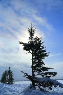 彩雲の写真素材 [FYI01819870]