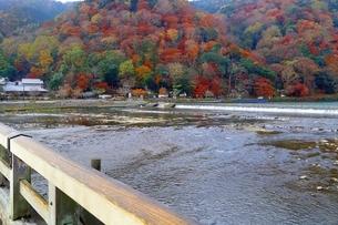 渡月橋と紅葉の嵐山の写真素材 [FYI01819881]