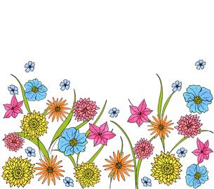 イエロー&ブルー&ピンク系フラワーDのイラスト素材 [FYI01819887]