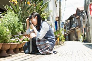 女子高生と使い捨てカメラの写真素材 [FYI01820242]