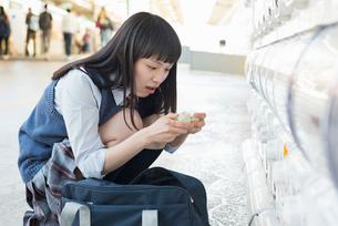 女子高生 カプセルトイ おもちゃの写真素材 [FYI01820364]