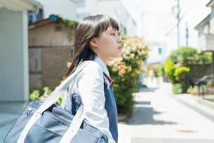 女子高生 スマートフォン 操作の写真素材 [FYI01820487]