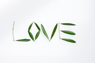 LOVEの文字をつくったオリーブの葉っぱの写真素材 [FYI01820602]