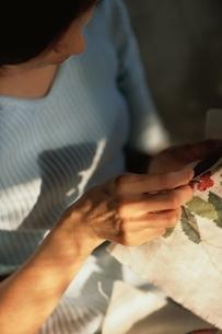 刺繍をする手元の写真素材 [FYI01820795]