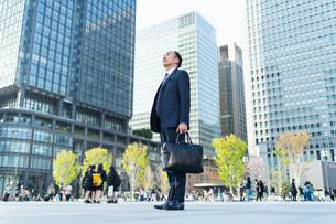 シニアのビジネスマンの写真素材 [FYI01820877]