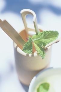 茶具に入っているミントの葉の写真素材 [FYI01820987]
