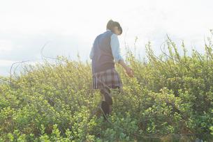 女子高生 散歩 植物の写真素材 [FYI01820990]