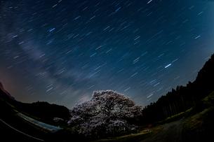 黒部のエドヒガン桜、星景の写真素材 [FYI01821002]