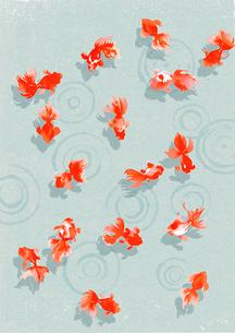 泳ぐ金魚のイラスト素材 [FYI01821043]
