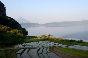 新永吉の棚田と池田湖の写真素材 [FYI01821139]