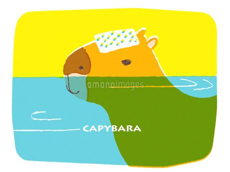 温泉につかるカピバラのイラスト素材 [FYI01821153]