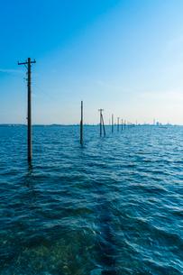 東京湾に伸びる江川海岸の海中電柱の写真素材 [FYI01821220]