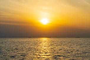 東京湾に伸びる江川海岸の海中電柱の写真素材 [FYI01821225]