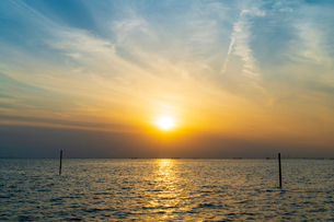 東京湾に伸びる江川海岸の海中電柱の写真素材 [FYI01821297]