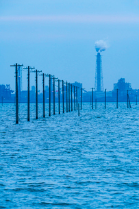 東京湾に伸びる江川海岸の海中電柱の写真素材 [FYI01821429]
