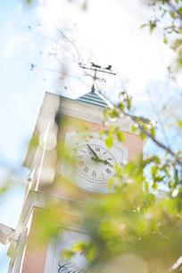 風見鳥と時計があるオシャレな塔の写真素材 [FYI01821823]
