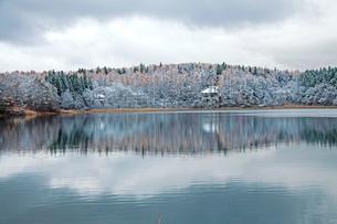 初冬の三本木沼の写真素材 [FYI01821941]